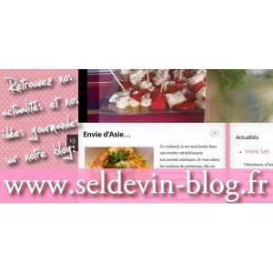 Le Blog Seldevin